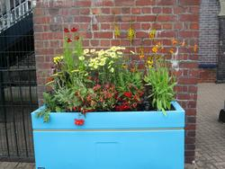 "Image of Longton's recently installed planter called ""Fire"" containing red and orange coloured flowers and plants."